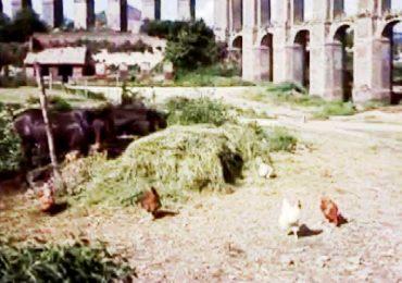 Nepi, acquedotto