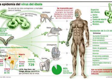 ebola_grafica_info
