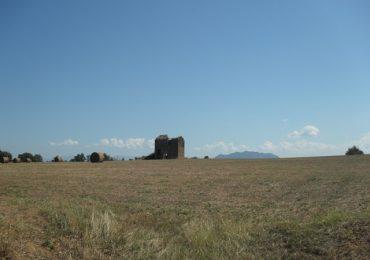Paesaggio campagne Nepi